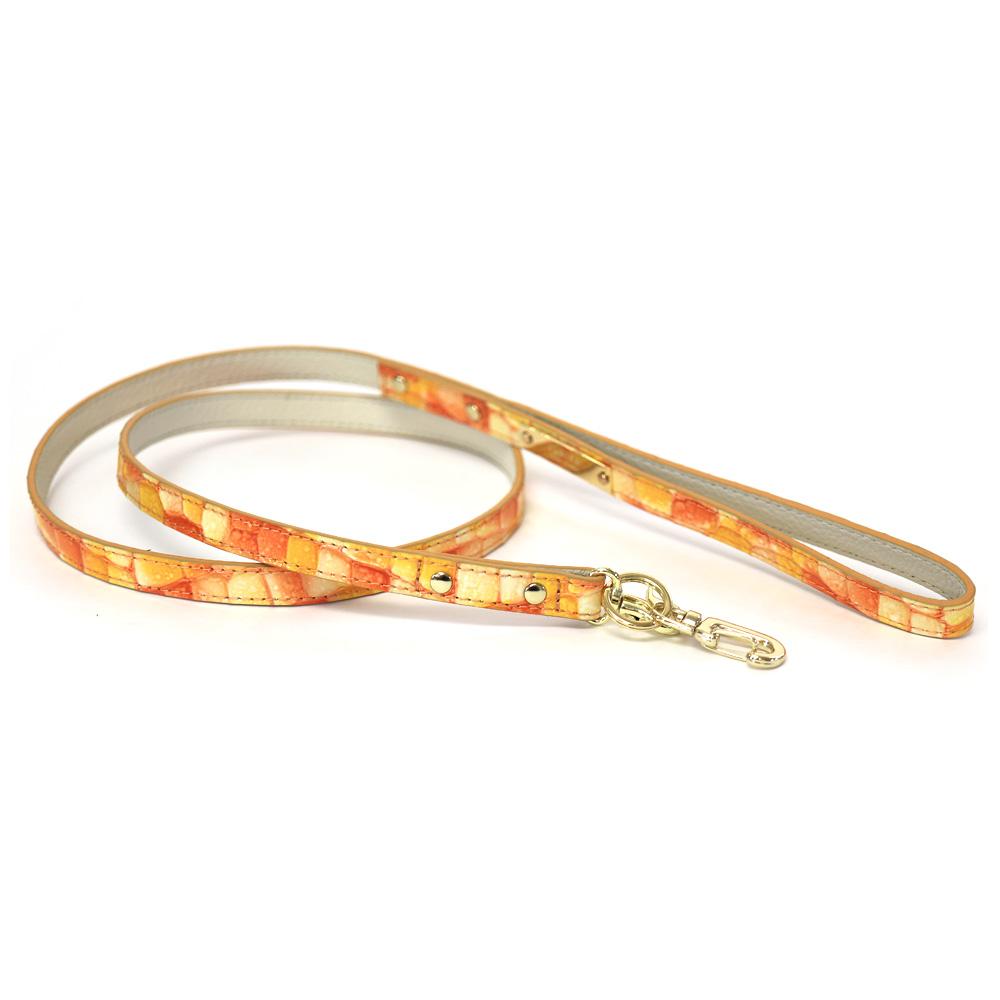 leash-リード